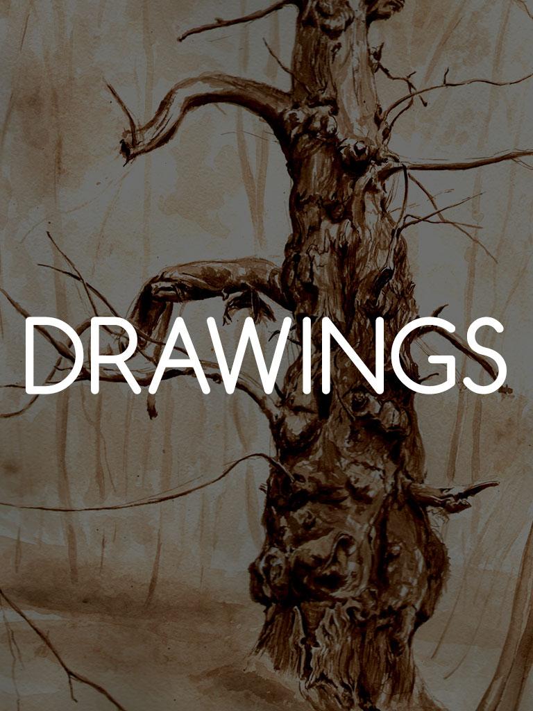 drawings1jpg